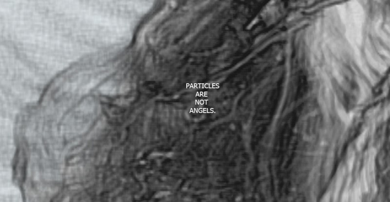 Particles Are Not Angels. Dealing with algorithms and the meaning of an artistic practice.