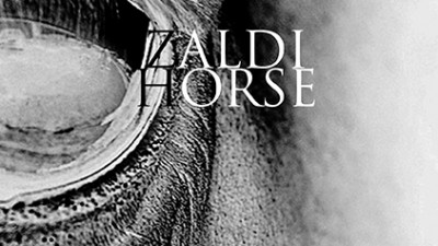 Zaldi/Horse (How to Explain Interactivity to an Audience)